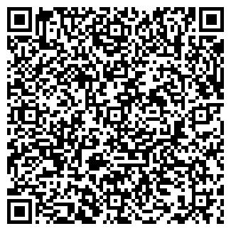 QR-код с контактной информацией организации ИНСТРУМЕНТ +