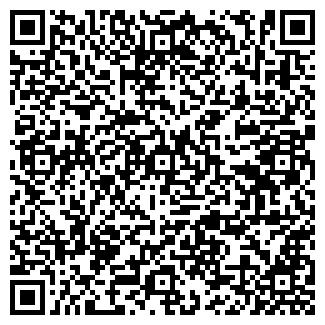 QR-код с контактной информацией организации MSG