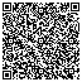 QR-код с контактной информацией организации ЗВЕЗДНОЕ