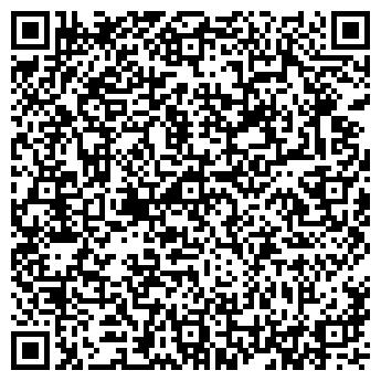 QR-код с контактной информацией организации СВЕТЛИЦА, ООО