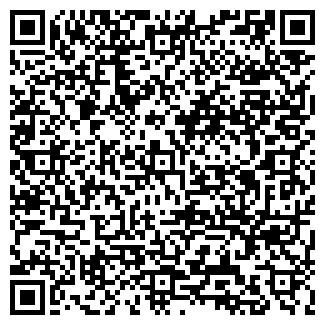 QR-код с контактной информацией организации АЛА ВИП ТРАНСФЕР