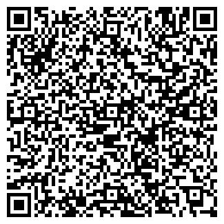QR-код с контактной информацией организации НИФО, ООО