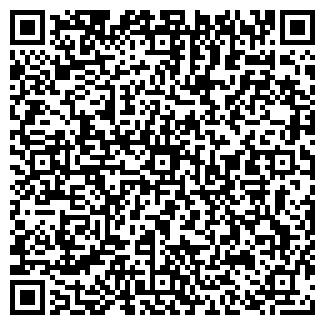 QR-код с контактной информацией организации БЕРНУЛЛИ