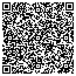 QR-код с контактной информацией организации ЛИОН ФИРМА
