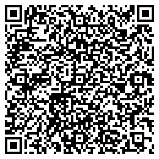 QR-код с контактной информацией организации СКИФ, ООО