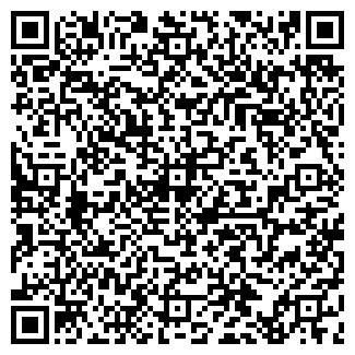 QR-код с контактной информацией организации АЛЬВИН БИЛД ТОО