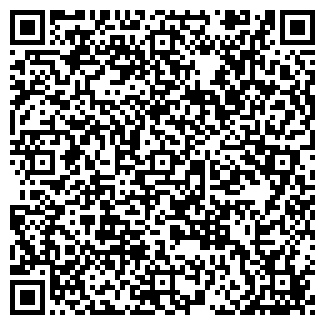 QR-код с контактной информацией организации АЛЬДИ МПКФ ТОО