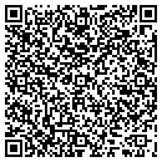 QR-код с контактной информацией организации РАЙНИС, ООО