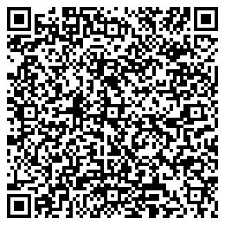 QR-код с контактной информацией организации АЛЬЯНС ЛИЗИНГ АО