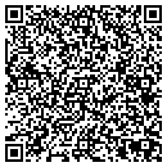 QR-код с контактной информацией организации МОИСЕЕВ, ЧП