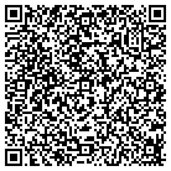 QR-код с контактной информацией организации БАРЫШНИКОВ, ИП