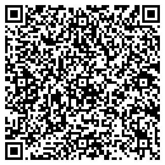 QR-код с контактной информацией организации ОПЕЛЬ-ГРУППА