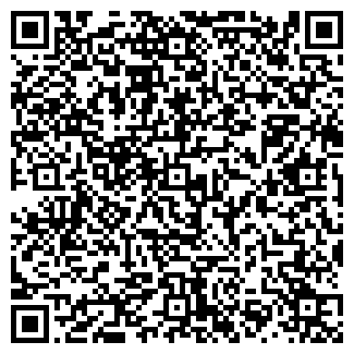 QR-код с контактной информацией организации ЛЕНМИКС, ООО