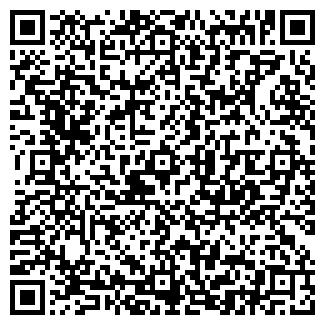 QR-код с контактной информацией организации БЛЕСК, ООО