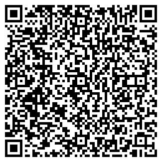 QR-код с контактной информацией организации АРИАЛ-ШАР