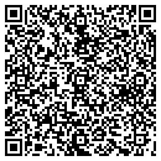 QR-код с контактной информацией организации DOMINE