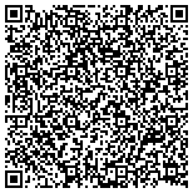 QR-код с контактной информацией организации НОВЫЕ ТЕЛЕКОММУНИКАЦИОННЫЕ СИСТЕМЫ СПБ