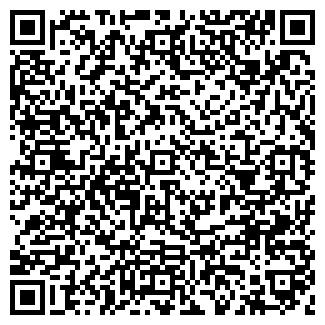 QR-код с контактной информацией организации ДИРИЖАБЛЬ