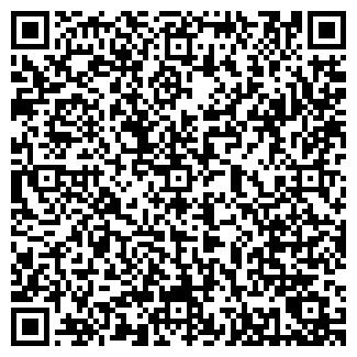 QR-код с контактной информацией организации ПЕСНЯ КАФЕ
