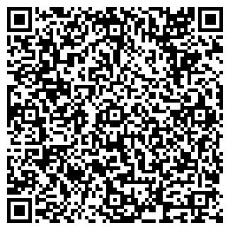QR-код с контактной информацией организации MUSEUM
