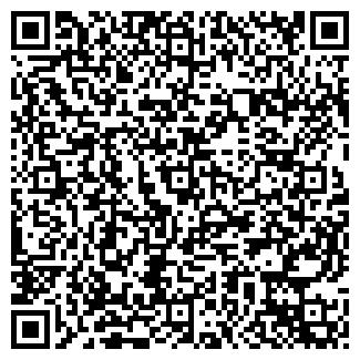 QR-код с контактной информацией организации ПЕТРОДВОРЕЦ 7 - 198517