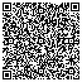 QR-код с контактной информацией организации ЧИНАР, ИП