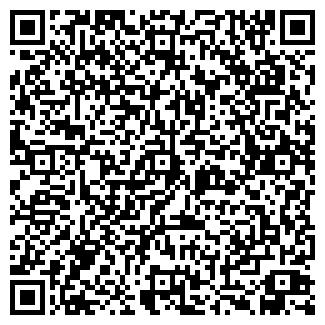 QR-код с контактной информацией организации № 319