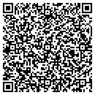 QR-код с контактной информацией организации № 493