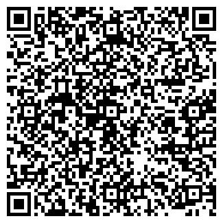 QR-код с контактной информацией организации № 529