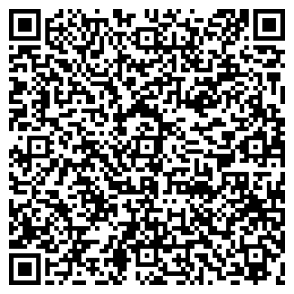 QR-код с контактной информацией организации ВИДИС, ООО