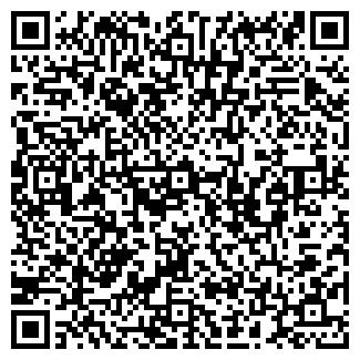 QR-код с контактной информацией организации KAZANKA.SPB.RU