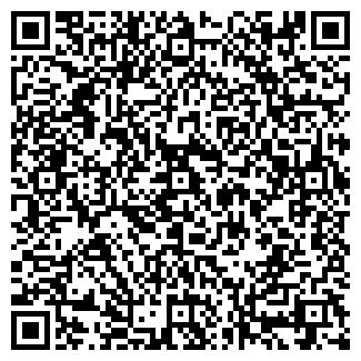 QR-код с контактной информацией организации № 315