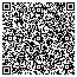 QR-код с контактной информацией организации № 410