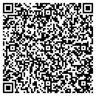 QR-код с контактной информацией организации БВТ, ООО