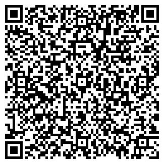 QR-код с контактной информацией организации ВОРОНИН, ИП