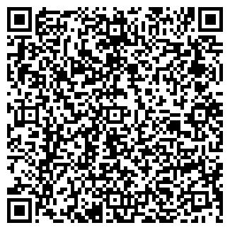 QR-код с контактной информацией организации № 202