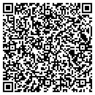 QR-код с контактной информацией организации № 236