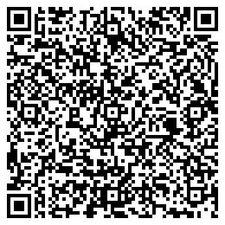 QR-код с контактной информацией организации № 301