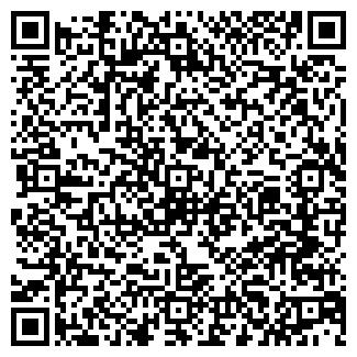 QR-код с контактной информацией организации № 313
