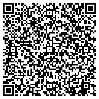 QR-код с контактной информацией организации № 376