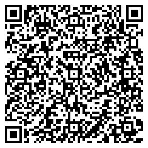 QR-код с контактной информацией организации ДИЛАР НЭО
