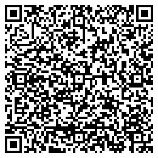 QR-код с контактной информацией организации ПФАЙФЕР, ООО