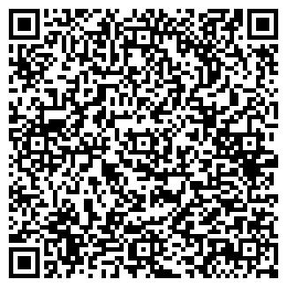 QR-код с контактной информацией организации ДОРОГИ, ООО