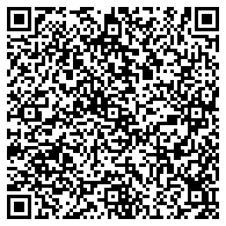 QR-код с контактной информацией организации IB RECORDS