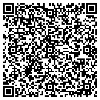 QR-код с контактной информацией организации РО.С.АУДИТ