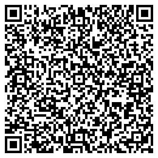 QR-код с контактной информацией организации ТЕНГИЗ КОПИР