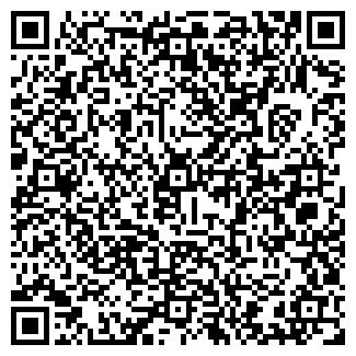 QR-код с контактной информацией организации ВИКИНГ, ЗАО