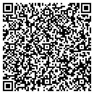 QR-код с контактной информацией организации RBI ХОЛДИНГ