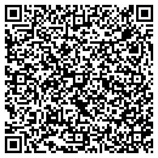QR-код с контактной информацией организации АЛЬЯНС СТРОЙИНВЕСТ