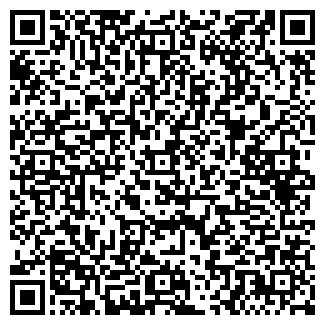 QR-код с контактной информацией организации НЬЮТОН, ООО